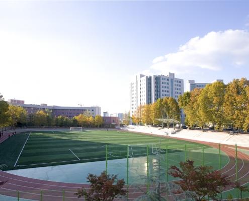 SolBridge University campus sport